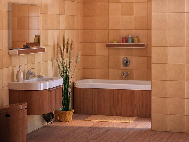 Kitchen and Bathroom Remodeling - Delta, Kohler - Shelton Plumbing